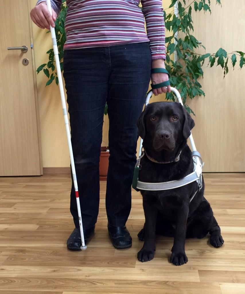Blindenführhund Aida mit Marion Putzer-Schimack