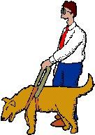 blinder Mann mit Blindenführhund