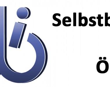 SLIÖ Selbstbestimmt Leben Initiative Österreich