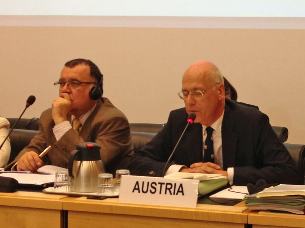Botschafter Tichy spricht bei der UN-Staatenprüfung