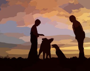 Zwei Menschen und 2 Hunde vor einem Sonnenuntergang. Es sind nur dunkle Umrisse der Menschen und Hunde sichtbar.