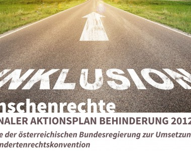 Nationaler Aktionsplan Behinderung 2012-2020