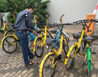 Ein Mann scannt den QR-Code eines Ofo Fahrrades um es auszuborgen. Links und rechts stehen noch weitere Ofo Fahrräder