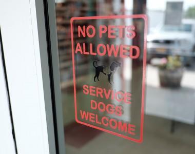 Aufkleber auf Glastür, NO PETS ALLOWED - SERVICE DOGS WELCOME