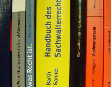 Foto Buchregal mit vielen Büchern zum Thema Sachwalterschaft