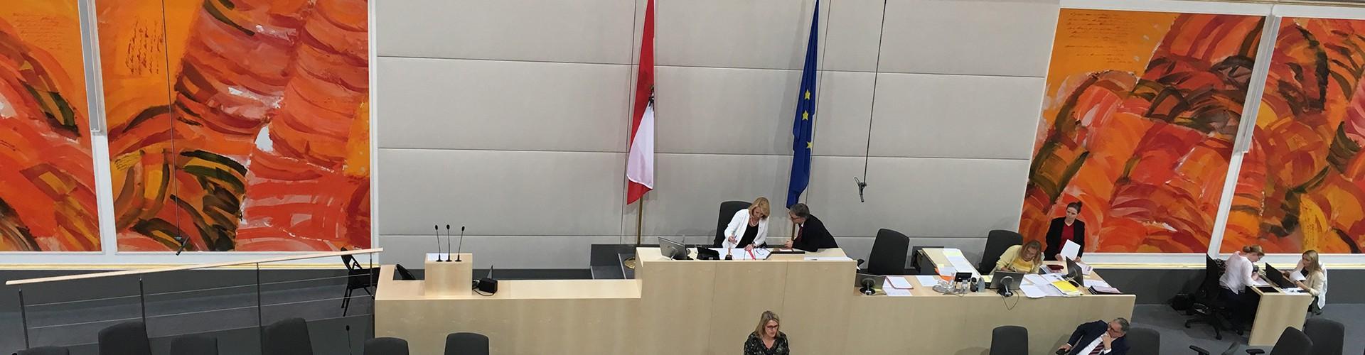 Abgeordnete Ulrike Königsberger-Ludwig (SPÖ) hält eine Rede zum Inklusionspaket