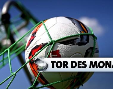 Logo: Tor des Monats