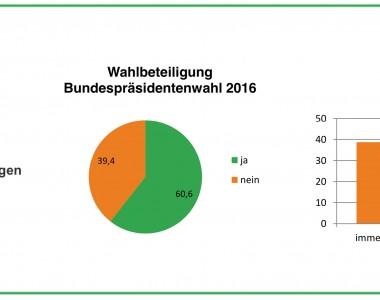 Forschungsbericht - Politische Teilhabe Wahlbeteiligung Menschen mit Behinderungen - Partizipatives Forschungsprojekt